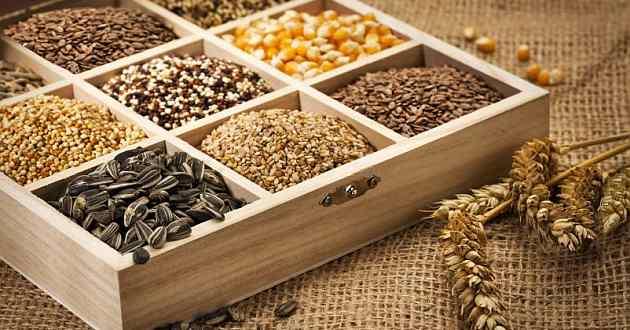 Commodities agricole, leggera ripresa per i prezzi di mais e soia